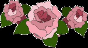 agriturismo-alle-rose-di-dussin-franca-solari